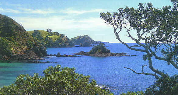 Photo Of The Bay Of Islands